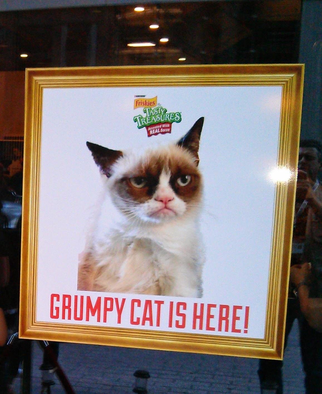 Internet star Grumpy Cat at SXSW