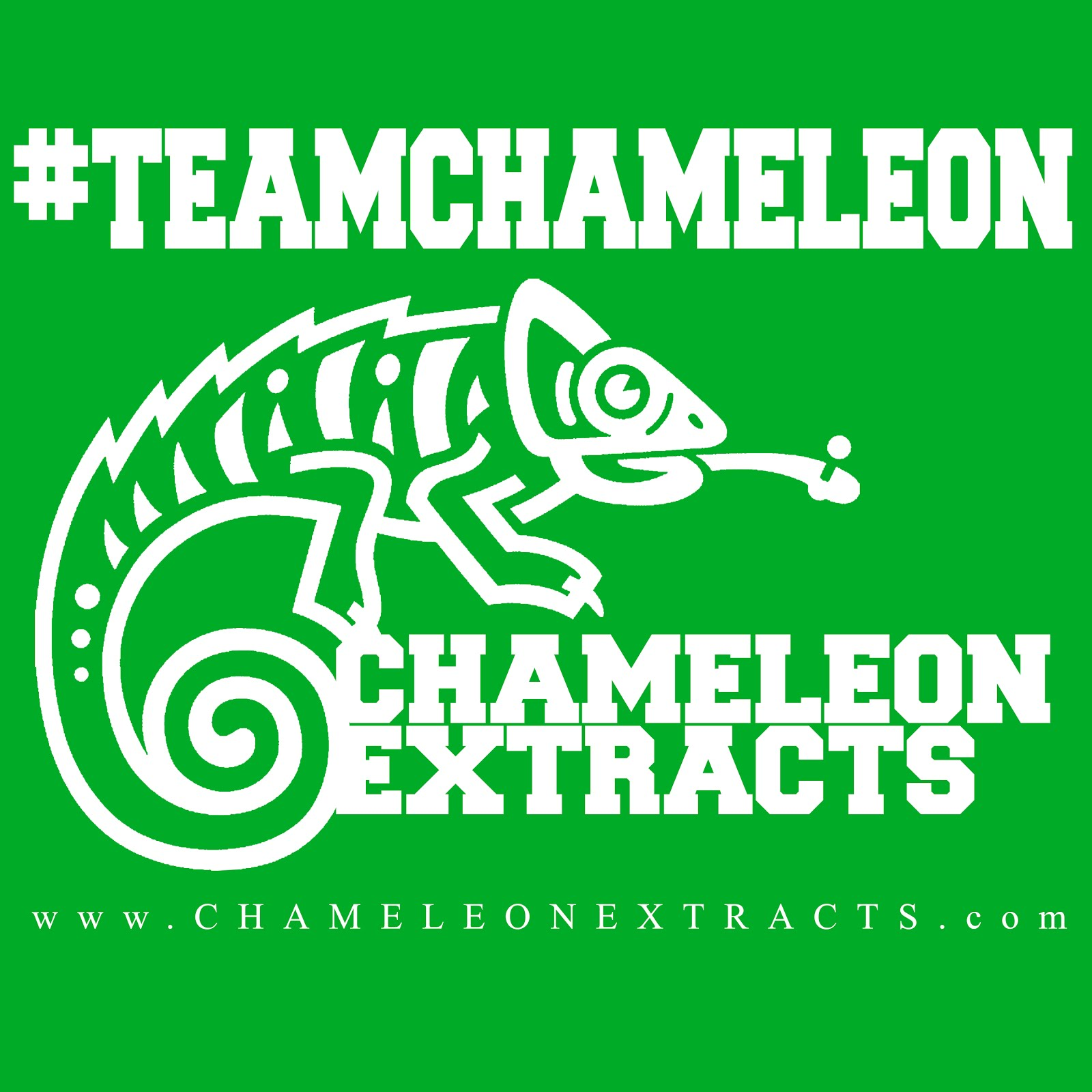 #TEAMCHAMELEON