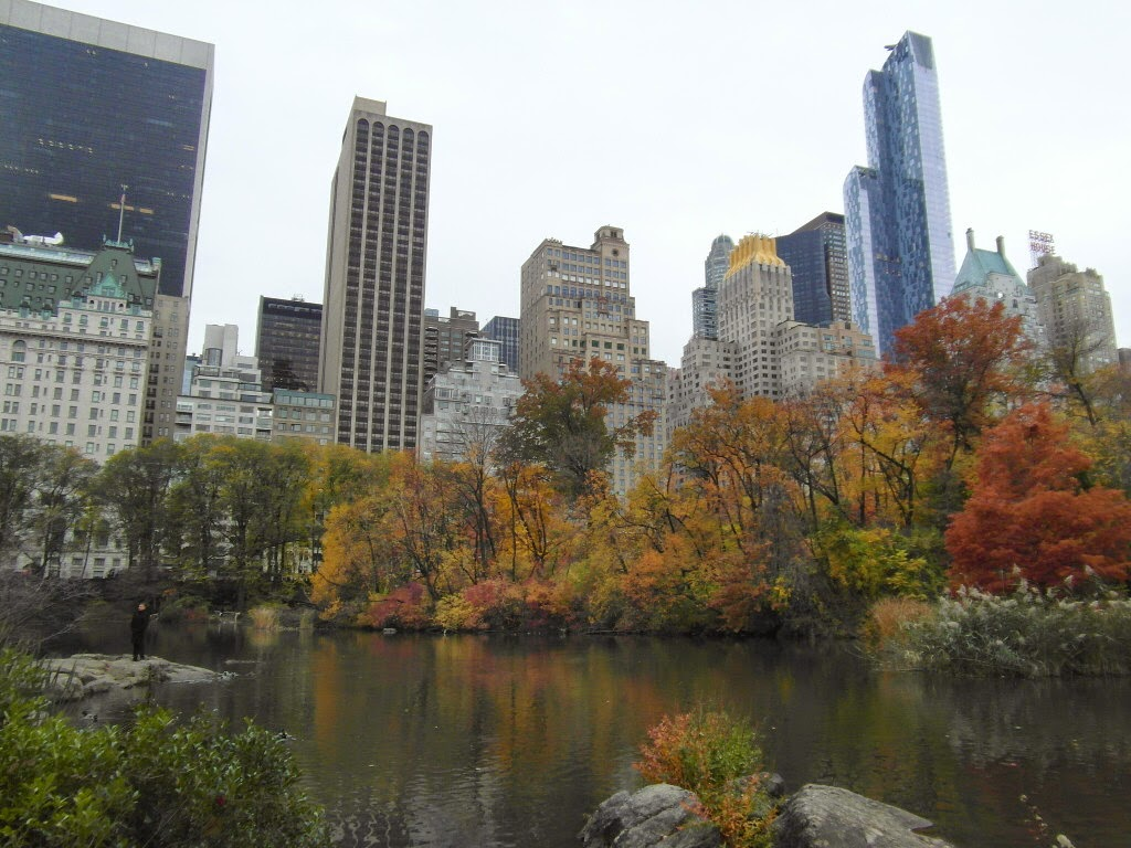 The duck pond, Central Park