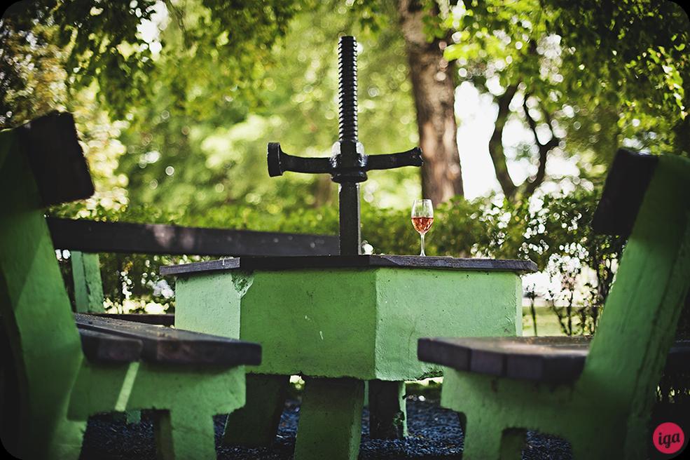 winnice na morawach