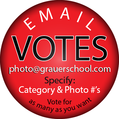 Email Votes to Photo@grauerschool.com