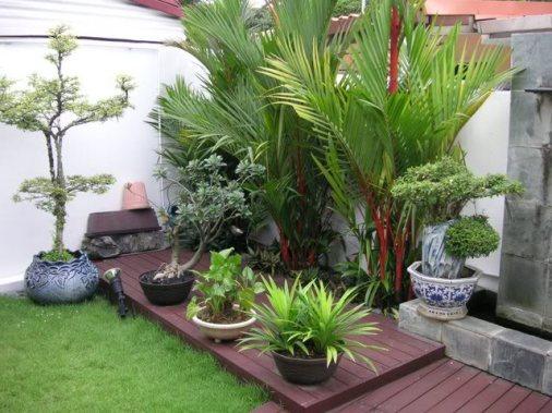jardim quintal grande:Decks de madeira sobre o gramado formam uma base que dá harmonia ao