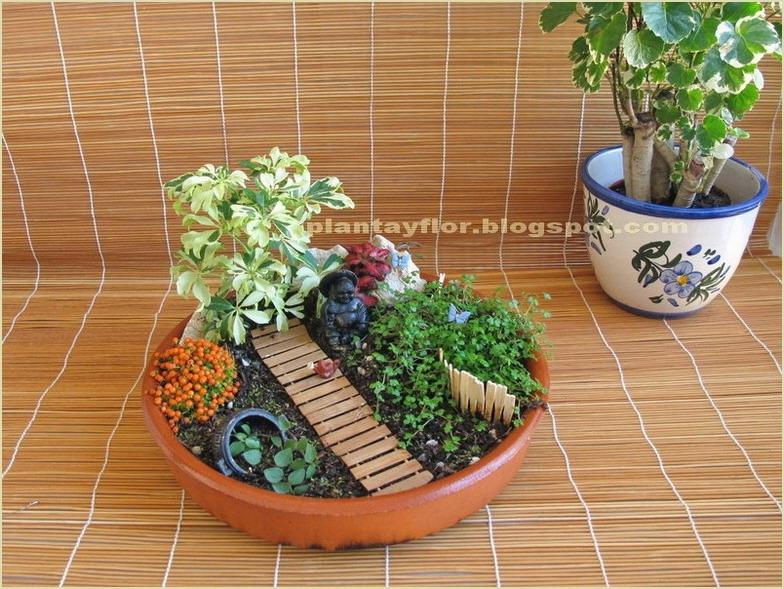 plantas y flores jardiner a en miniatura. Black Bedroom Furniture Sets. Home Design Ideas