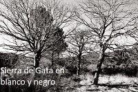 Sierra de Gata en blanco y negro