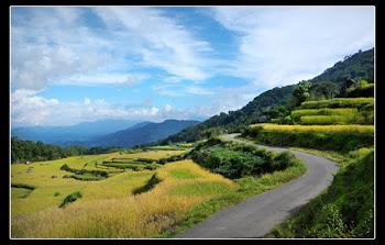 Panorama Toraja