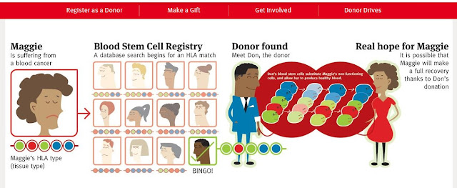 blood stem cell registry process
