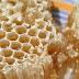 Propiedades de la miel y sus beneficios