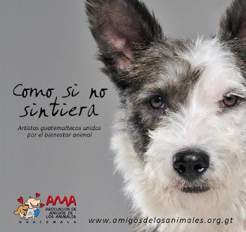 Banda Sonora Para Una Vida <br>Apoya a AMA