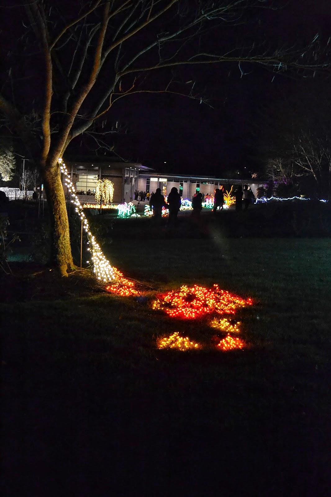 The Outlaw Gardener Garden D 39 Lights At Bellevue Botanical