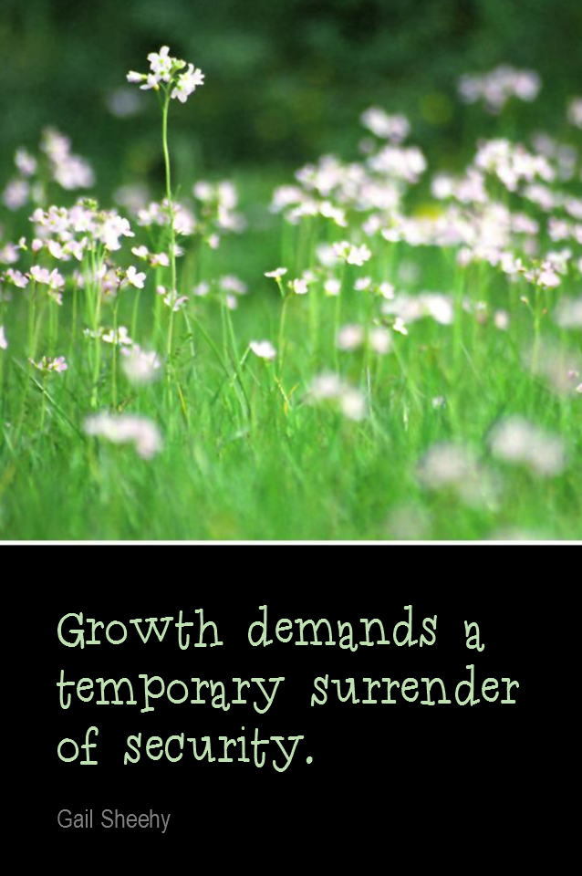 visual quote - image quotation for GROWTH - Growth demands a temporary surrender of security. - Gail Sheehy