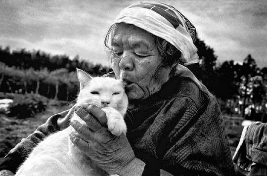 grandmother Misao and cat Fukumaru