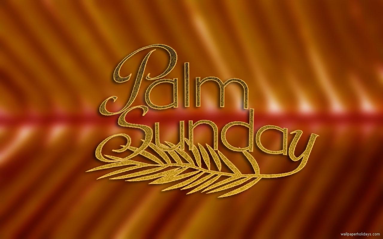 free palm bible download