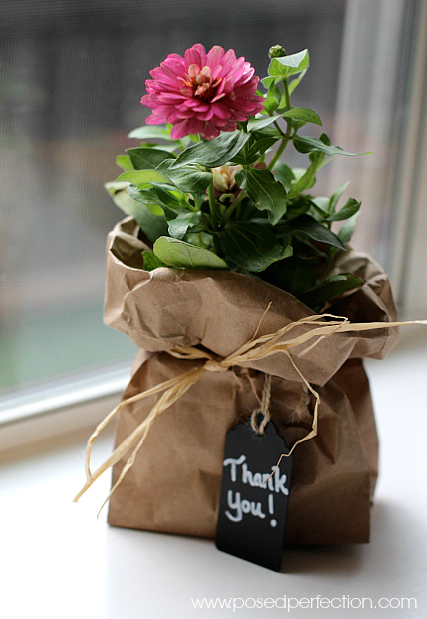 Simple wrapping with a chalkboard tag turns an ordinary garden annual into a sweet gift!