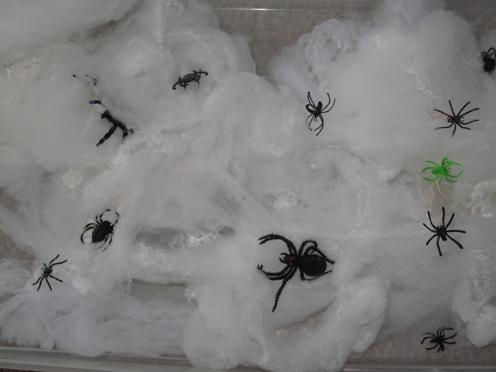 primary learning logs spiders spiders spiders
