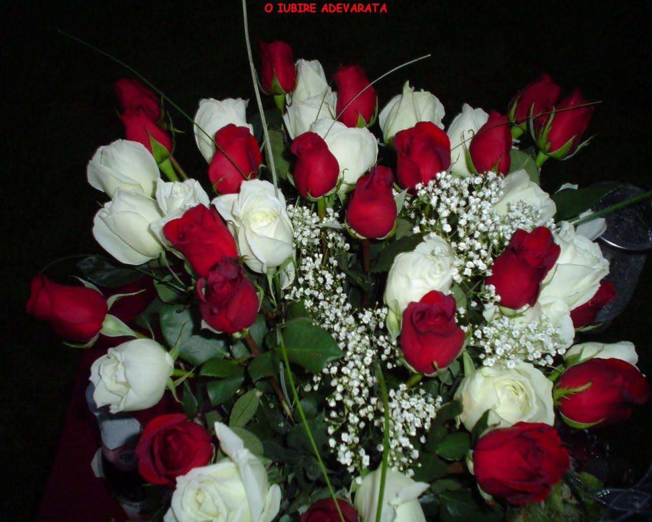 Imagini Cu Mesaje De La Multi Ani >> MESAJE DRAGOSTE SI IMAGINI: Imagini cu flori