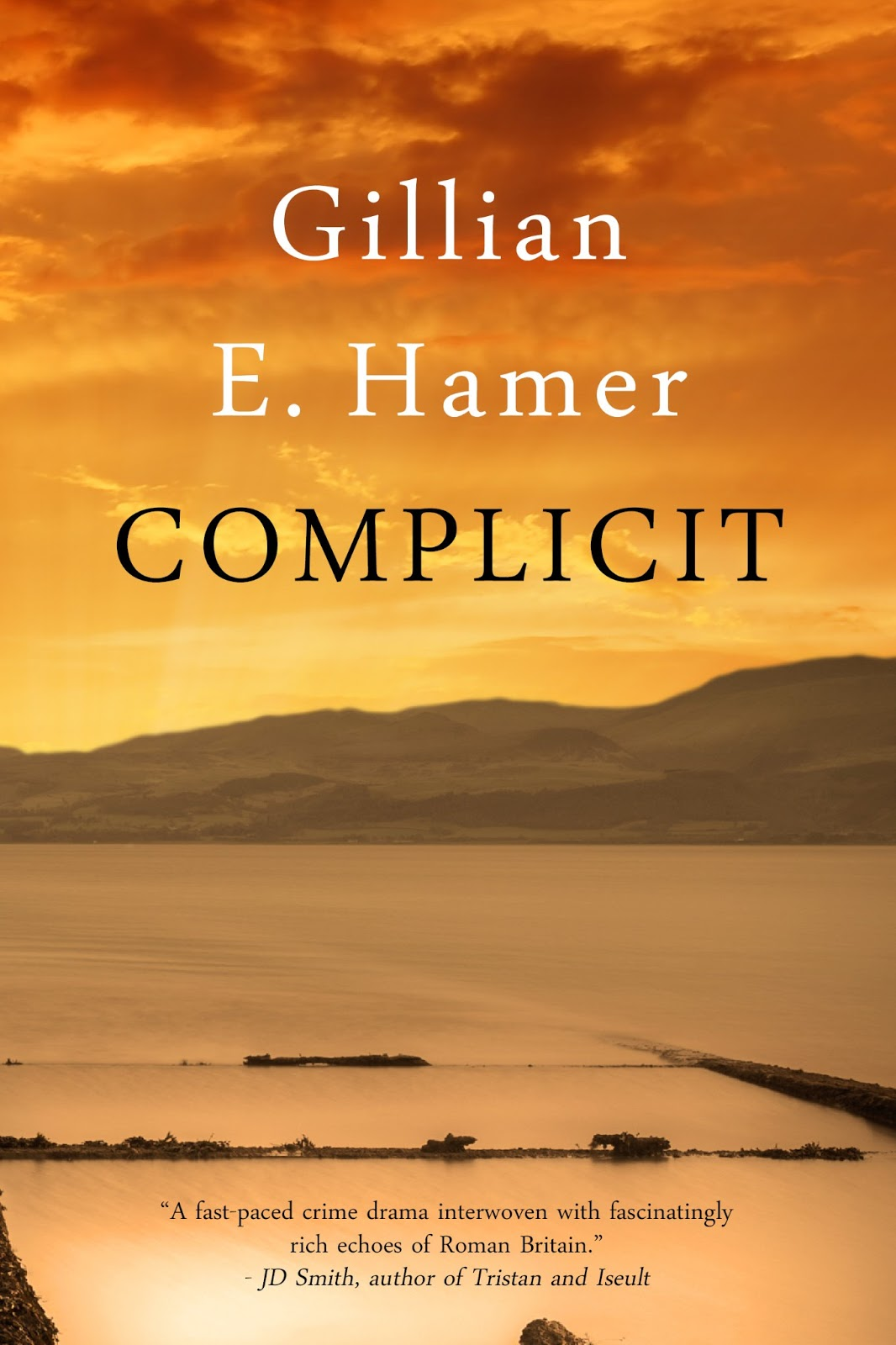 G E Hamer; 1 Edition (19 May 2013)