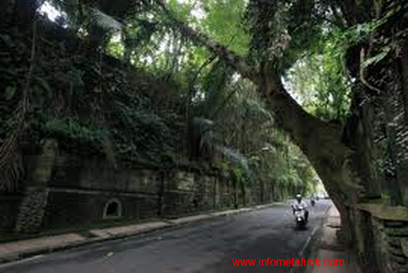 Misteri Jalan Raya Tjampuhan Bali