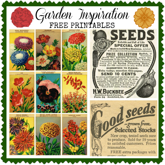 Free-Printable-Garden-Seed-Royalty-Free-Graphics