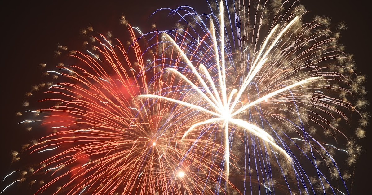 Backyard Fireworks : Backyard Farming Garden fireworks
