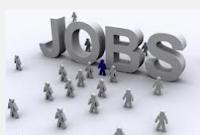 DEO Jobs 2013