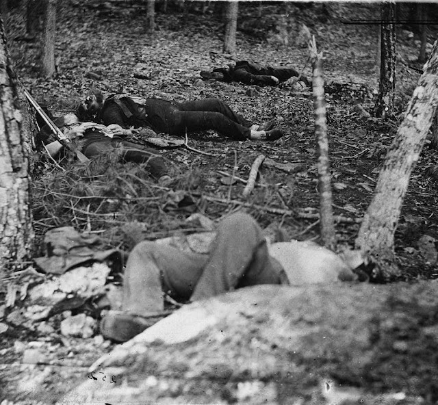 Bloated bodies of union and confederate soldiers on little round top