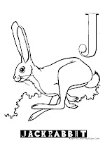 Animal Alphabet J Jack Rabbit