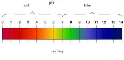 thang đo nồng độ ph trong nước hồ bơi
