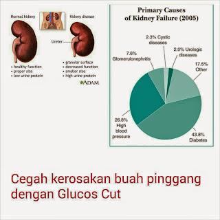 cegah penyakit buah pinggang