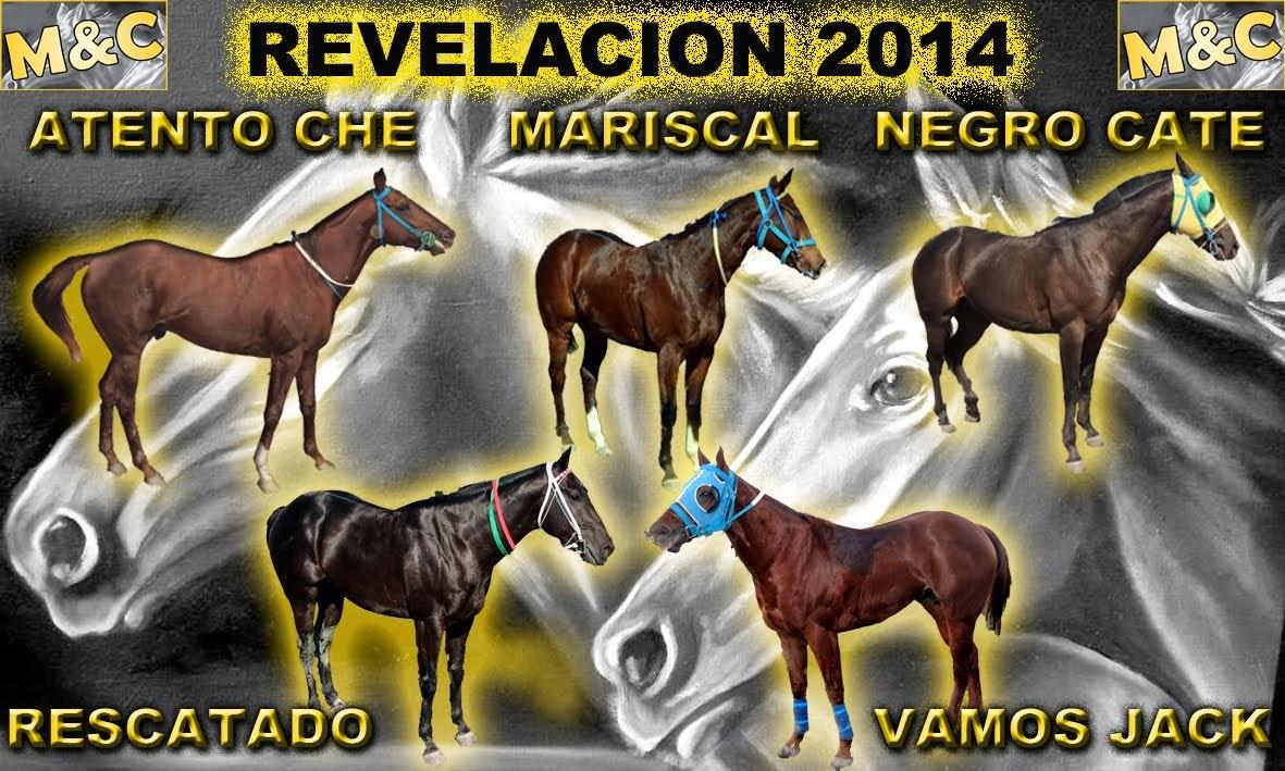 REVELACION