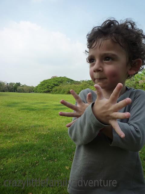 parks, green areas, recreation, toddler, bangkok, thailand