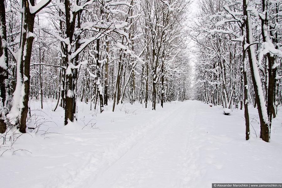 Дорожка в зимнем парке