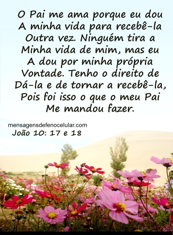Mensagem de Deus para hoje - blogers.com.br