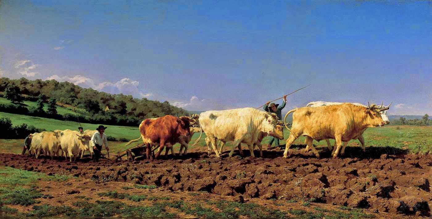 Rosa Bonheur - Labourage nivernais , dit aussi le sombrage ,1849