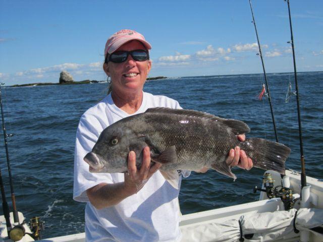 no fluke fishing: Tautog experts share tips, fishing good