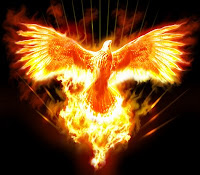 Fênix, a Ave que renasce das cinzas