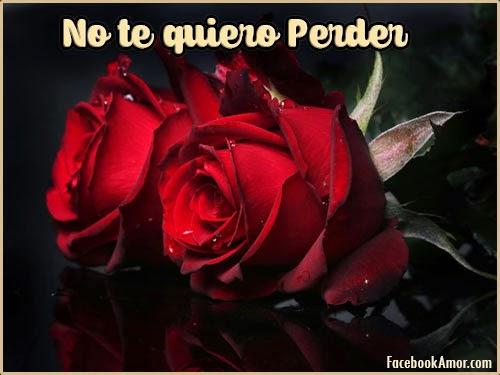 imagenes con frases de rosas