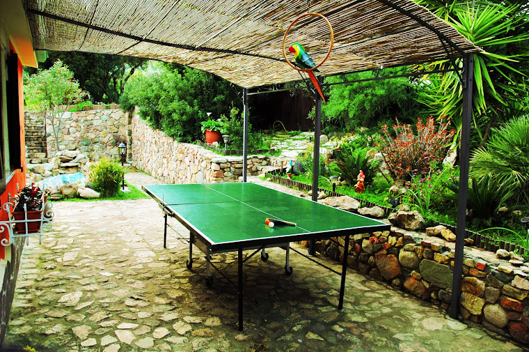 giardino ping pong