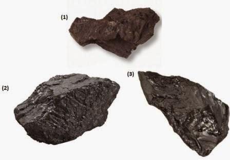 Pengertian, Pembentukan, Manfaat Batu Bara