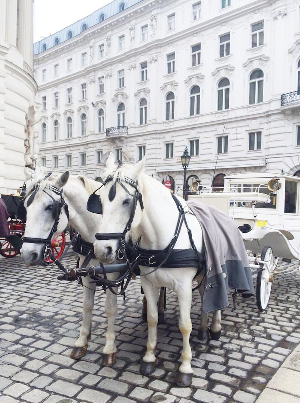 Wien_Tipps_Wochenendtrip_Urlaub_Sightseeing