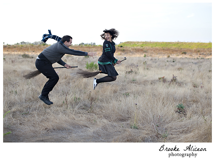 Harry Potter Prenup Idea