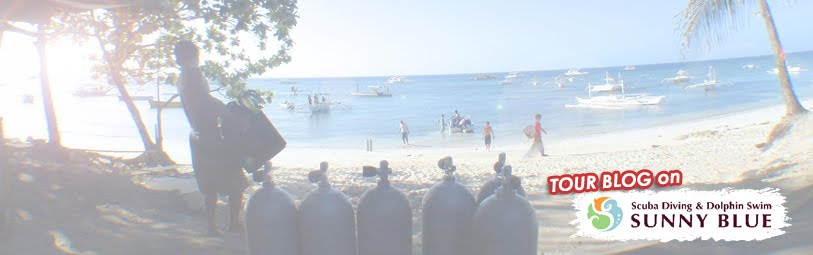 ダイビングと御蔵島ドルフィンスイムツアーログ