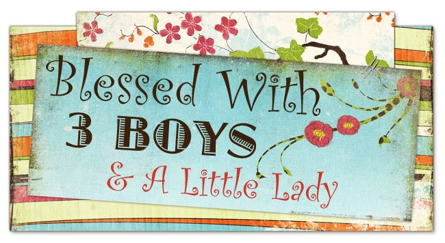 Blessed With 3 Boys & A Little Lady