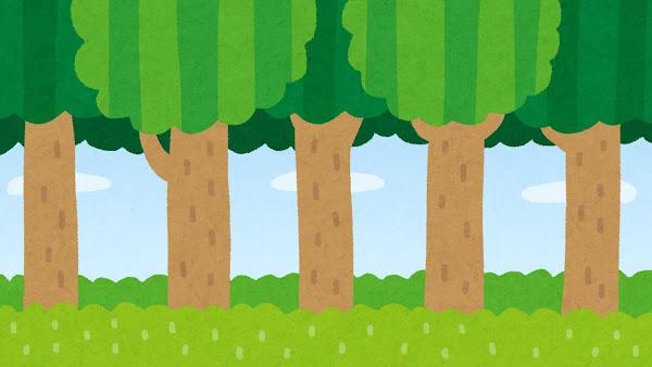 森のイラスト(背景素材)