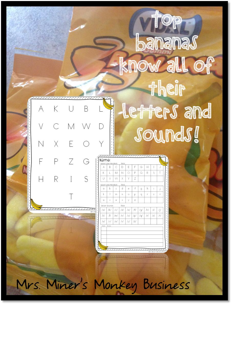 http://www.mrsminersmonkeybusiness.com/2014/07/effective-dolch-word-assessment-system.html