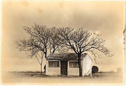visiones (novelas, ensayos, poemas, reportajes, documentales, comics...) sobre el medio rural.