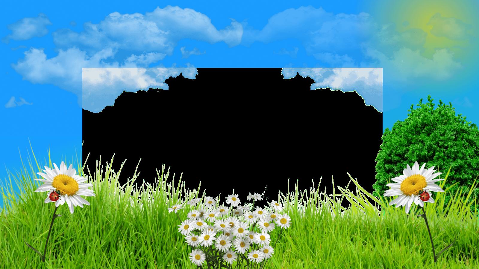 Moldura Primavera - Campo de flores png