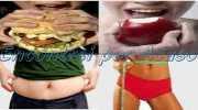 Alimentação equilibrada e emagrecimento