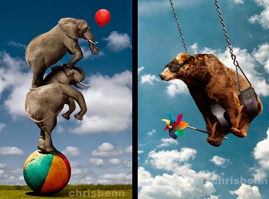 01-Balancing-Elephants-Balloon-Chris-Bennett-Animal-Photographs-of-Surreal-Art-www-designstack-co