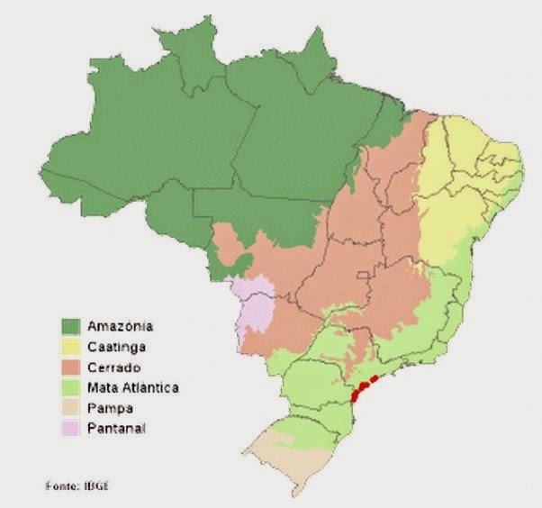 distribuição-papagaio-de-cara-roxa-Amazona-brasiliensis-wikiaves