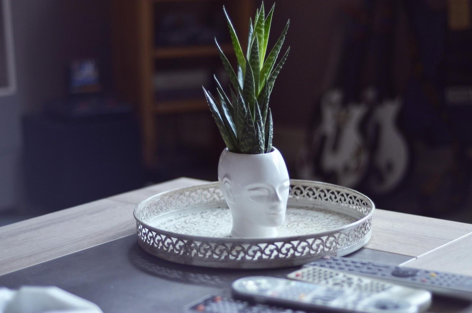 cocoon deco. Black Bedroom Furniture Sets. Home Design Ideas